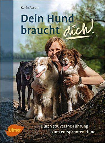 Buch Dein Hund braucht dich!